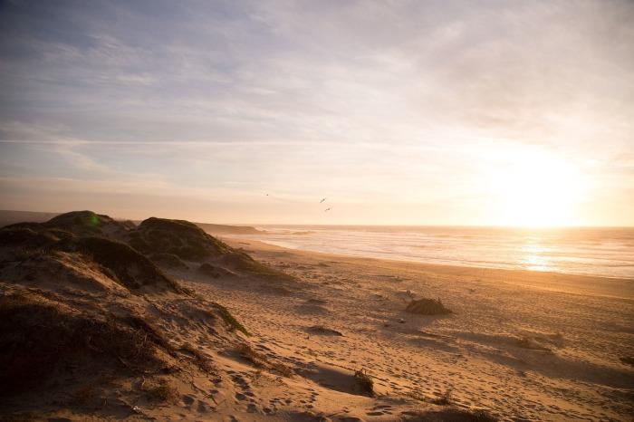 beach-690454_1280